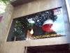Visual Merchandising - Decoração de fachada da loja FAS